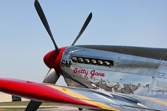 Old Betty Jane (LuAnn Snawder Photography) Tags: county airport clark collingsfoundation bettyjane aviationhistory wingsoffreedomtour tp51cmustang