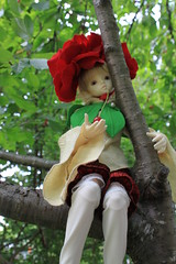 IMG_6238 (Bloodflower_) Tags: rose cherry outdoors happy doll mind bjd dim zone dz in flowne