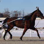 170 - race 10 - Mach Ten w/ Tim Driver thumbnail