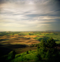 At height to such distant lands (Zeb Andrews) Tags: sunset color film square landscape washington holga lofi hills pacificnorthwest rolling palouse plasticlens bluemooncamera