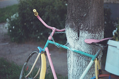 Tied bicycle (Andrey Timofeev) Tags: street pink tree colors bicycle bush bokeh chain attached screwmount     helios44  m39  zenit3m  ferraniasolaris400 44 3  june2012 39