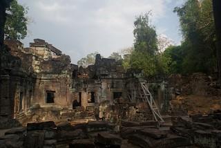 Jungle ruins, Angkor Vat - Cambodia