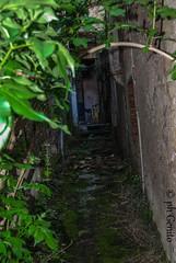 DSC_0235 (antomatto) Tags: centro case ricordi medievale fantasma paesaggio benevento passato vecchio storico vecchia desolazione paese apice casrello paesefantasma diroccate castellomedievale paesevecchio casediroccate apicevecchia storiacentrostorico