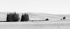 All That's Left (John Westrock) Tags: blackandwhite abandoned barn rural farm panoramic pacificnorthwest washingtonstate palouse canon135mmf2lusm canoneos5dmarkiii
