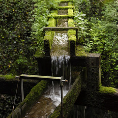 _SDI1645 (Sivispacem...) Tags: green art nature water eau sigma 18 cascade merrill 1835 sd1