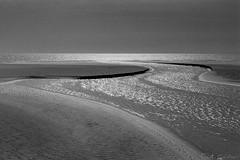 Le fleuve phmre (fred.guidoni) Tags: leica minolta kodak trix d76 summicron kodaktrix portlanouvelle leicam42 summicronm502 dimagescandual