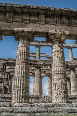 DSC_9108 (Dan Kistler) Tags: paestum italy velia greek ruins temples trains