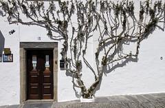 Fachada de Monsaraz (John LaMotte) Tags: fachada puerta porta portugal door dintel infinitexposure monsaraz ilustrarportugal
