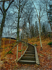 2016-03-05_14-24-30_IMG_5795_q75_s10 (Cyrus II) Tags: street blue winter light sky tree green lamp grass yellow stairs forest dark geotagged moss branch afternoon sweden stockholm dry twig trunk railing sollentuna swe lomvgen krrdal iphone5s geo:lat=5942979700 geo:lon=1800025800