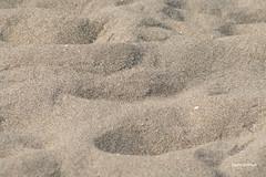 32-070505 Spanien 1 267 (hemingwayfoto) Tags: andalusien natur reise sand spur strand