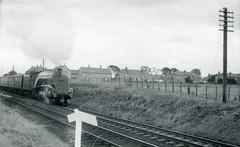img752 (OldRailPics) Tags: steam kingfisher british locomotive railways laurencekirk 60024