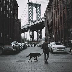 Dumbo Brooklyn NY (ROY.NYC) Tags: dumbo streetphotography ricoh gr nycstreetphotography nyc streetphoto colorstreets ricohgr2 candid streetphotographer urbanstreet
