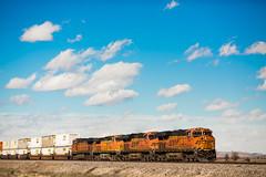 More Songs About Trains (Thomas Hawk) Tags: usa newmexico train route66 unitedstates fav50 unitedstatesofamerica fav10 fav25 fav100 rte66