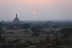 2016myanmar_0391 (ppana) Tags: bagan alodawpyay pagoda ananda temple bupaya dhammayangyi dhammayazika gawdawpalin gubyaukgyi myinkaba wetkyiin htilominlo lawkananda lokatheikpan lemyethna mahabodhi manuha mingalazedi minochantha stupas myodaung monastery nagayon payathonzu pitakataik seinnyet nyima pagaoda ama shwegugyi shwesandaw shwezigon sulamani thatbyinnyu thandawgya buddha image tuywindaung upali ordination hall