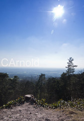 Leith hill (justyourcofchi) Tags: wood uk blue trees england sky sun tower history nature sunshine woodland point landscape countryside spring high model woods flickr photographer view hill national trust leith forests chiarnold justyourcupofchicom justyourcupofchi