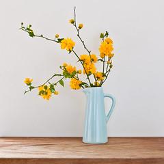 goldunfolding (penwren) Tags: stilllife yellow canon ceramic golden mar