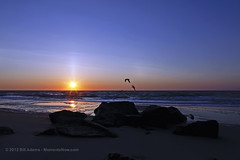 Ocean City Sunrise (Bill Adams) Tags: birthday beach sunrise seagull maryland oceancity atlanticocean canonef2470mmf28lusm