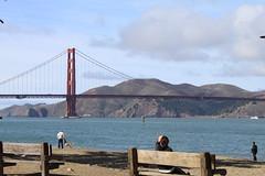 Golden Gate Bridge (commishkorey) Tags: sanfrancisco cemetery goldengatebridge presidio crissyfield presidioofsanfrancisco sanfrancisconationalcemetery ggnpc11 ggb75