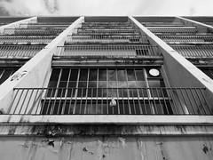 Let the renovation begin! (schromann) Tags: architecture facade germany opera exterior terrasse cologne kln repair architektur 50s renovation oper fassade wilhelm sanierung riphahn 20120619