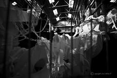 chains behind the bars (picsie14) Tags: blackandwhite white art contrast chains interestingness interesting bars sydney like wideangle follow installation popular biennale interestingness2 cockatooisland ultrawideangle 14mm interesting2 nikond700 biennalesydney2012
