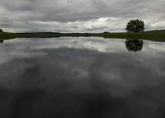 Loch Urr (.annajane) Tags: uk sky lake reflection tree clouds scotland loch dumfriesandgalloway dumfriesshire