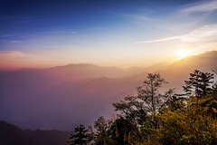 (digital_trance) Tags: sunset plant flower bird 20d nature fog forest sunrise canon landscape landscapes countryside corn rice canon20d taiwan sigma canoneos20d  fields sakura  ricefields   alishan        lancscape        40d     canoneos40d alishannationalscenicarea canon40d     5dmarkii 5d2  5dii canon5dmarkii eos5dmarkii canon5d2 beautyoftaiwan 2011