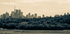 look from the top . 91/365 (W.....) Tags: toronto downtown hill danforth 365 broadview riverdalepark