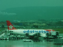 Edelweiss ....Edelweiss ...Every Morning You Greet Me (outdoorPDK) Tags: rain switzerland airport swiss zurich flughafen edelweiss swissnationalday