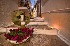 Charming night in Ostuni (Photos On The Road) Tags: flowers cactus italy white house flower building tourism lamp horizontal wall night stairs outside outdoors europa europe mediterranean mediterraneo italia outdoor traditional nobody stairway southern step staircase candlelight fiori vicolo oldtown turismo bianco borgo puglia notte touristic whitewashed candele scalinata nessuno apulia paese ostuni turistico tradizionale gradino meridionale allaperto scalino orizzontale characteristic suggestivo outdoorshot imbiancvatoacalce