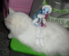 Abbey Bominable and the yeti cat ~ SAM2994_MonsterHigh_Abbey_ (applecandy spica) Tags: pink blue white abbey cat fur furry kitten chat doll soft purple kitty fluffy katze fatcat chubby yeti weiss gatto bianco blanc sparkling kittie ktzchen micio chaton gattino weis soffice peloso morbido gattone micetto micione gattochiatto monsterhigh abbeybominable