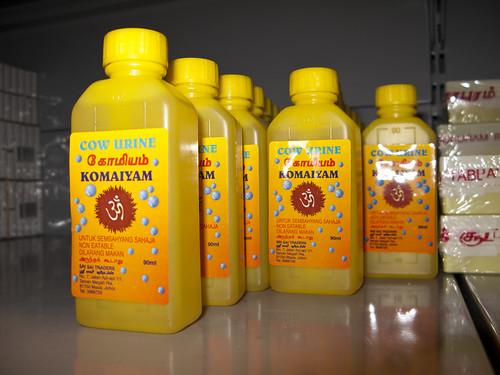 Bottled Cow Urine for religious ceremonies