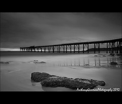 A Reflection (AnthonyGinmanPhotography) Tags: bw jetty catherinehillbay coalloader bwnd110