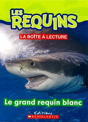 Le grand requin blanc (Vernon Barford School Library) Tags: new school white fish animals french reading book shark high marine underwater library libraries great reads books read paperback cover junior jaws sharks covers whites bookcover middle vernon undersea franais recent greatwhiteshark bookcovers languages nonfiction paperbacks greatwhite foreignlanguages foreignlanguage barford lote softcover marineanimals secondlanguage greatwhitesharks greatwhites languagesotherthanenglish vernonbarford softcovers secondlanguages 9781443145558