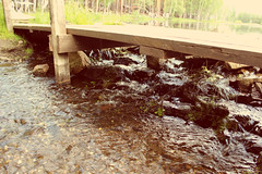 # () Tags: bridge nature water flow duct stream ensue rivulet rill bridgework