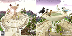 TLC@ The Cosmopolitan round June 19th - July 2nd (- TRUE & LAUTLOS CREATIONS -) Tags: life bird animal cosmopolitan bath mesh wildlife sl secondlife second animated tlc
