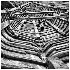S t r i p e s (gHopson.) Tags: chile old bw patagonia white black puerto boat los nikon stripes lagos ii 1855 montt vr bote abandonado d90