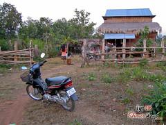 House - Preah Vihear.jpg