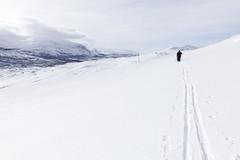 Abisko-Riksgränsen-Björkliden 2012 (Anders Sellin) Tags: winter vacation is vinter skiing sweden lappland sverige snö semester skidor skidåkning