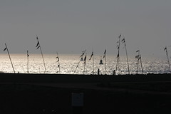 IMG_9917 (tinehendriks) Tags: zee zon ijsselmeer harlingen ondergaande ijsselmeerkust streetpeolple