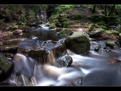 Over The Stepping Stones (A-D-Jones) Tags: wood trees fall water rocks stream long exposure stones panoramic rivington stepping tigers land hdr clough wigan