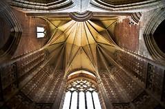 A756-Transepto norte de la catedral de Toulouse (Eduardo Arias Rbanos) Tags: windows architecture arquitectura nikon cathedral gothic catedral ribs vault toulouse contrapicado d300 gtico bveda nervios ventanal eduardoarias bvedaestrellada eduardoariasrbanos