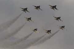 Black Eagles (Martin Davenport 600k views thank you all) Tags: 2012 riat t50 blackeagles