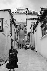 (Anwen2010) Tags: china bw monochrome temple fuji monk buddhism shangrila tibetan yunnan zhongdian songzanlin xe2