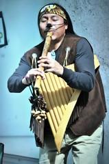 Indian musician (rodiann) Tags: street musician holland art rotterdam outdoor indian