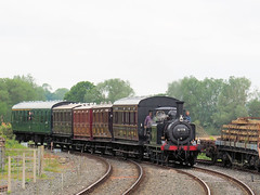 20160530-25 (kesrbobby) Tags: sussex terrier kesr knowle northiam lbscr 32678