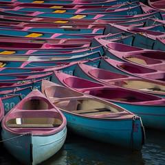 Want to take a canoe trip? (uneitzel) Tags: pink square boot boat hamburg canoe kanu bootsvermietung mzuiko40150mm olympusem5