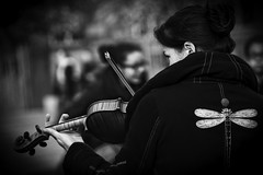 The violin and the dragonfly... (Periades) Tags: blackandwhite bw girl blackwhite noir noiretblanc dragonfly streetphotography nb violin fille libellule musicien violon streethuman sreethuman