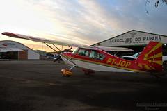 American Champion Aircraft 7GCBC Citabria, PT-JOP (Antnio A. Huergo de Carvalho) Tags: aca aerobatic aerobatics bellanca citabria acrobtico americanchampionaircraft acrobaciaarea ptjop