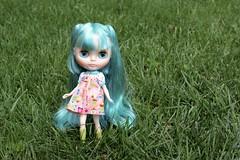 Clara (Chassy Cat) Tags: blythe fantasy hair scalp hatsune miku stock takara neo plasticfashion pf plastic fashion bigeyes