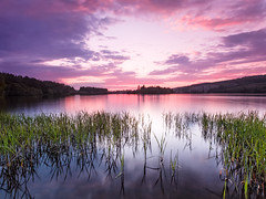 Moy Mauve (Stoates-Findhorn) Tags: longexposure sunset sky clouds reeds scotland twilight unitedkingdom mauve loch moy invernessshire 2016